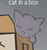 red_pill: (cat in a box)