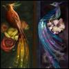 kiena: (Birds, Dayglimmer & Nightshimmer)