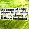 neuhallidae: (Lettuce)