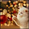 cuda: Yuletide Kitty (yuletide)