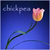 chickpea: (tulip)