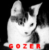 gozer: I made this! (Default)