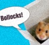 benedict: The hamster is saying bollocks. It is a scornful hamster (bollocks! by ann)