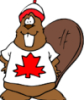 benicio127: (Mr. Beaver)