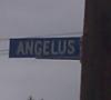 calledalaska: (street sign)