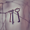 the_coffee_shop: Three rusty old keys hanging from the branch of a tree. (mezzy)