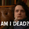 alizarin_nyc: (black books bernard asks am I dead?)