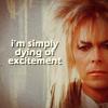 "sidravitale: iconzicons Labyrinth ""simply dying of excitement"" LJ icon (""dying of excitement"" Labyrinth iconzico)"