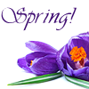 michelel72: (General-Image-SpringCrocus)