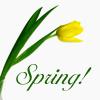 michelel72: (General-Image-SpringTulip)
