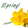 michelel72: (General-Image-SpringYellow)