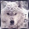 thdancingferret: Winter Wolf TDF (Default)