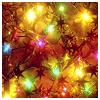 beafuddle: A photo of multicolored christmas lights. (christmas lights)