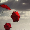 elizabeth: red umbrellas being blown through a grey sky (panic)