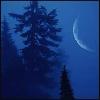 wordweaverlynn: (winter, moon)