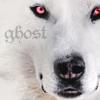 ishtar79: (asoiaf:ghost)