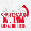 raysgal: (Christmas David Tennant)