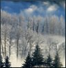 annotated_em: a hillside in winter, with snow and trees covered in hoarfrost (Default)