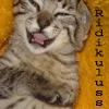ridikuluss: (happykitteh)