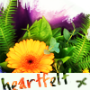pensnest: Orange flowers with caption: heartfelt (Floral heartfelt)