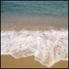 jaebility: (nature // shore)