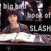 last_raindrop: (slash book)