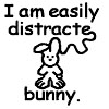 quinfirefrorefiddle: I am easily distracte- bunny! (Plot Bunny)