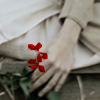 nepenthe: (Red Flowers)