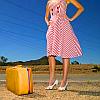 peskipiksi: (dress and a suitcase)