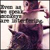 peskipiksi: (interfering monkeys)