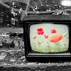 halfshellvenus: (TV)