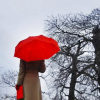 nuri: women with red umbrella and bag walking in a winter storm (winter)