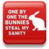 nekokitsune13: bunnies steal my sanity, fic ideas (sanity)