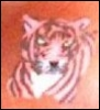 ladyblackrose: Colored in Tattoo (Painted Tyger)