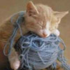 ouri: (i fought the yarn and the yarn won)