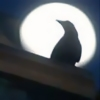 ext_402500: (pic#crow)