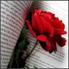 katsune: (roseinbook)
