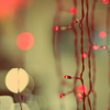 sarken: red lights on a green background ([misc] glints in the night)
