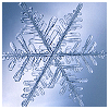 susanreads: Close-up of a snowflake (snowflake)