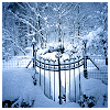 susanreads: a gate covered in snow (snow (gate))