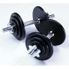kauricat: (weights)