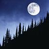 lindevi: (winter moon)