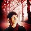 lisztful: (Merlin forest)