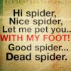 dopo_il_sole: (Good Spider)