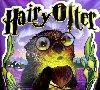 sthinks: (hairy_otter)