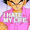 cheloya: (DBZ >> badman hates the world)