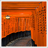 ginandkerosene: the fushimi inari shrine (where we hide from rain)