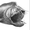 caddies: (fishies)