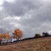 redroanchronicles: Seasons (seasons)