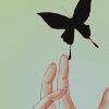 emwitchwood: ([xxxholic] butterfly)